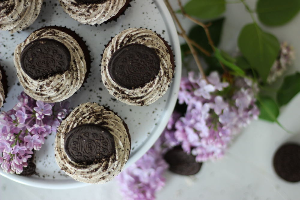 Cupcakes25 (6)